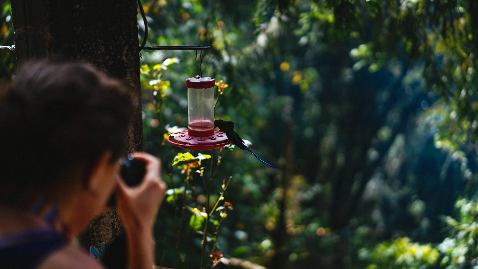 Taking a picture of a hummingbird in Salento, Colombia