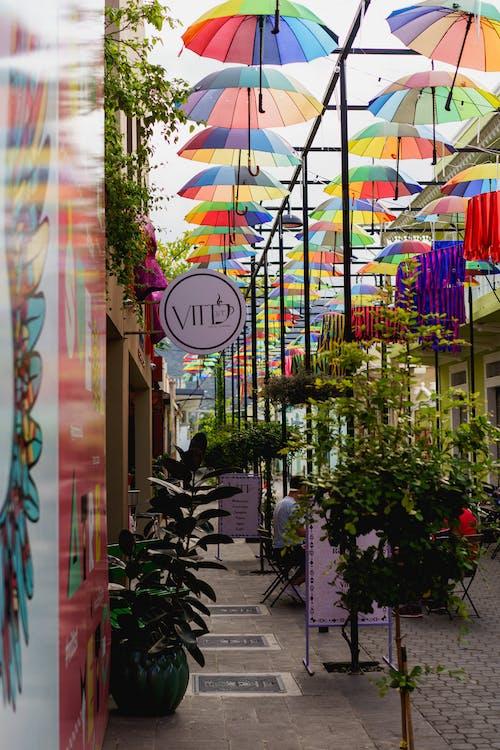 En iyi turistik yeri ziyaret edin Umbrella Street Puerto Plata şehri Dominik Cumhuriyeti