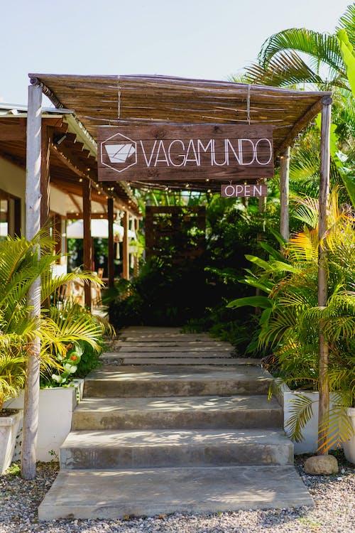 Cabarete Dominik Cumhuriyeti'nde Vagamundo kapalı açık hava tarzı kafenin yeri