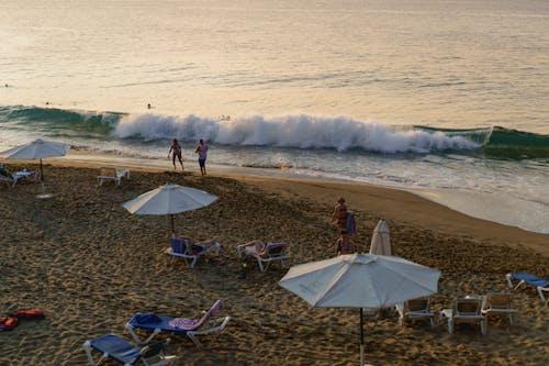 Sosua Dominik Cumhuriyeti'ndeki Playa Alicia'daki plajda altın saat