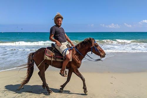 Uçurtma Plajı'nda ata binen Dominikli adam, Cabarete Dominik Cumhuriyeti