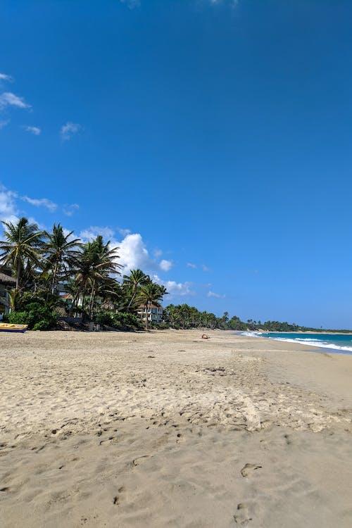 Cabarete Dominik Cumhuriyeti'nde plaj nasıl görünüyor?