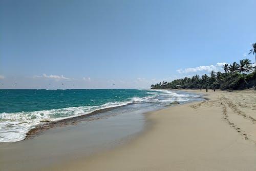 Bozo Beach Cabarete Dominik Cumhuriyeti'nde temiz plajlar
