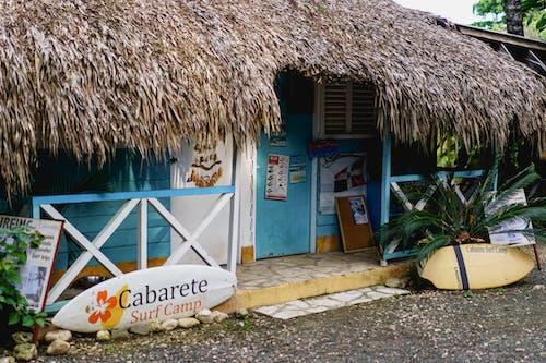 Sörf tahtası ve tropikal bitkiler ile sazdan kulübe ofisi