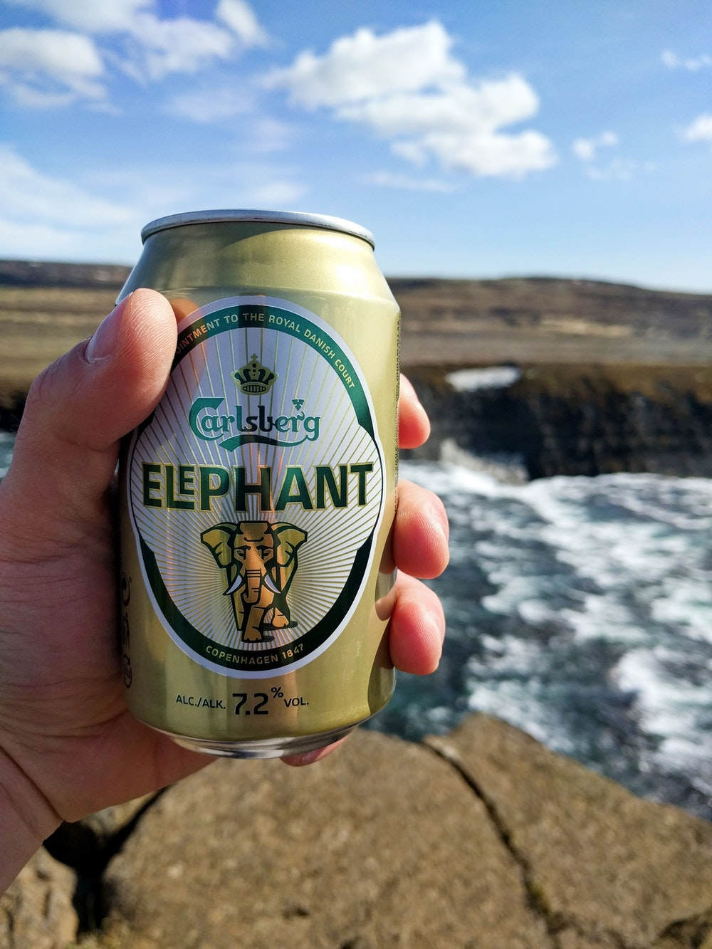 Elephant beer can
