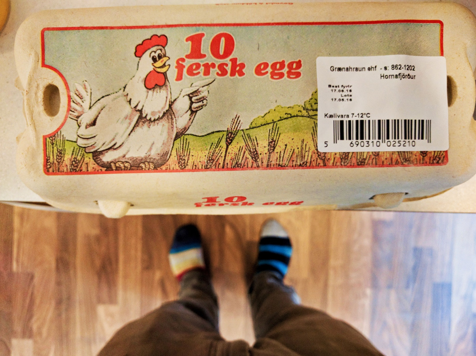 Carton of eggs in Iceland