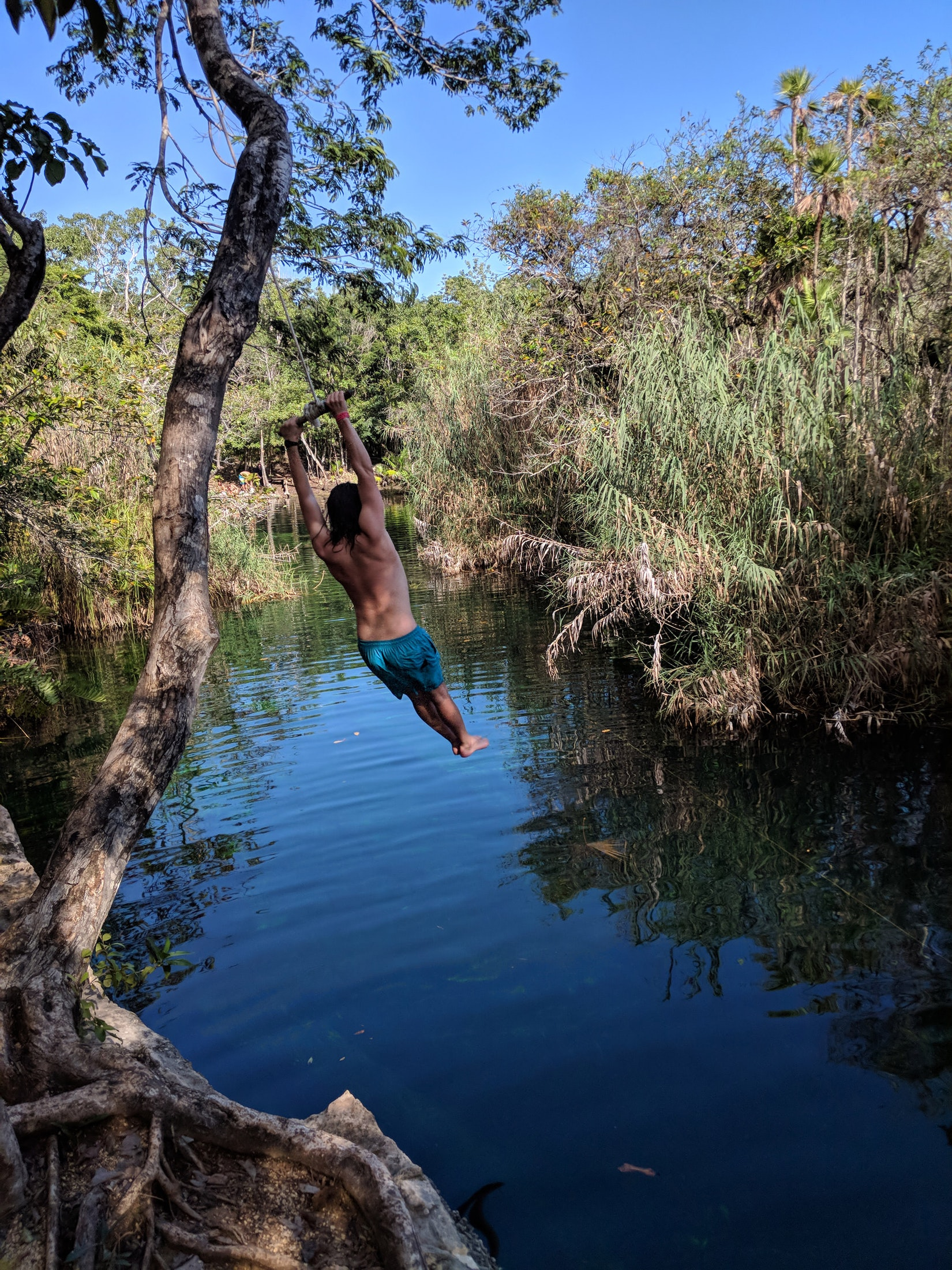 A friend swinging on a rope into a cenote