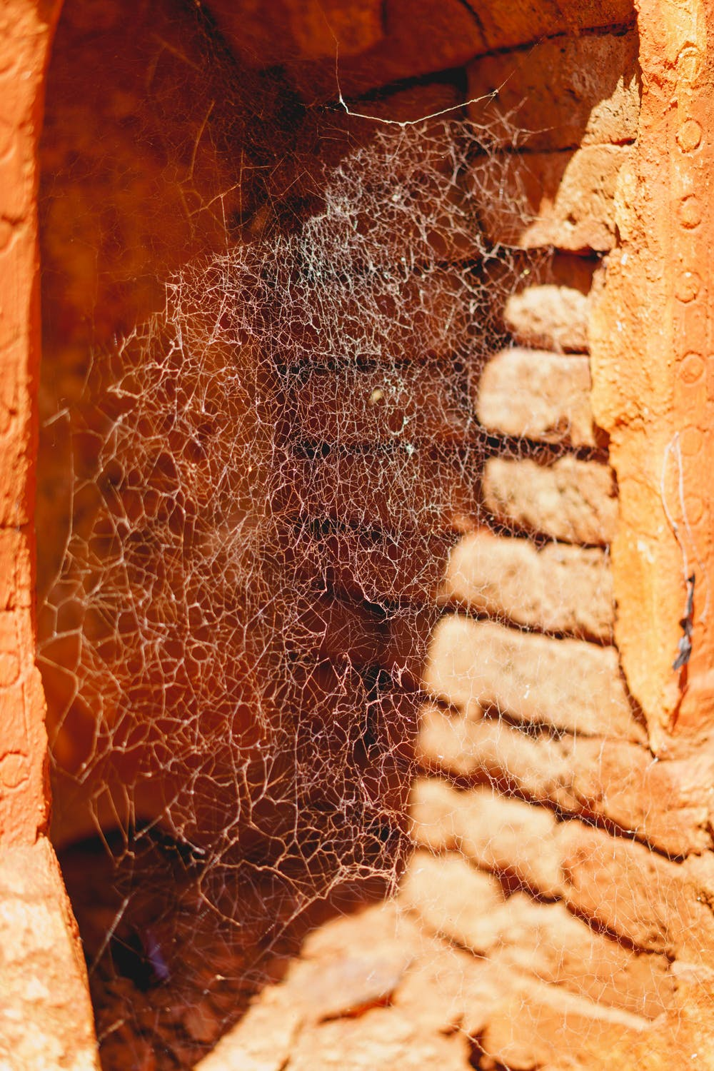 Spider web inside an ancient pagoda in the village of Indein Myanmar
