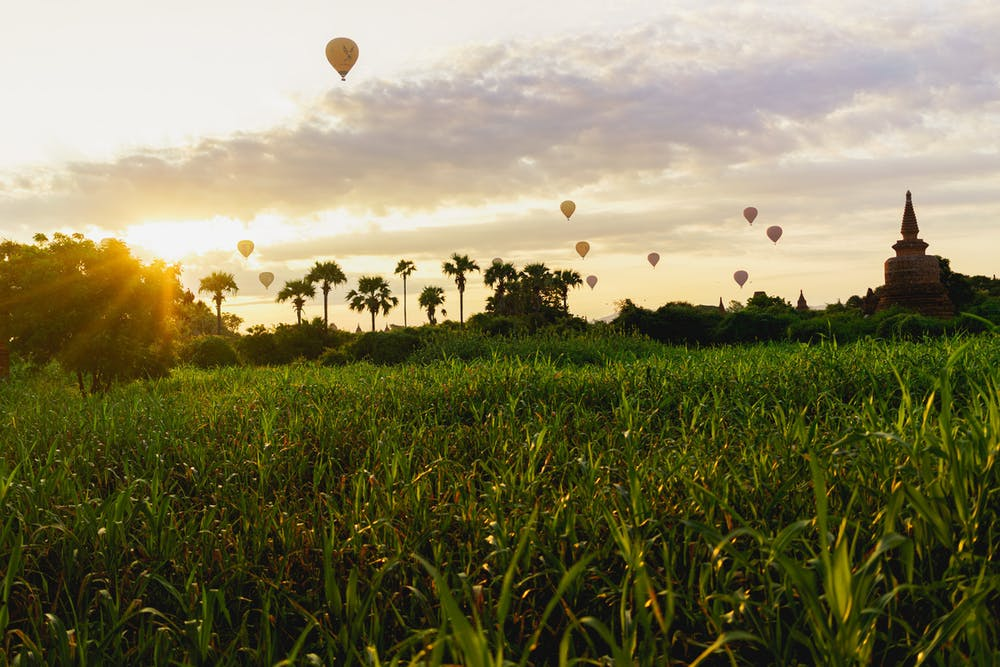 Sunrise views in a sea of grass at the Bagan UNESCO World Heritage Site in Myanmar