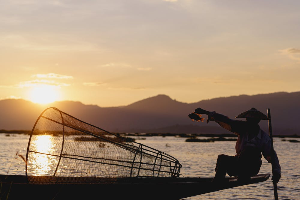 Burmese dancing fisherman of Inle Lake Myanmar holds up a fish for a photo in his boat at sunset