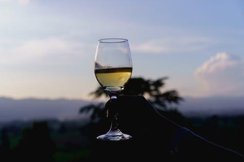 Inle Lake Myanmar, Red Mountain şaraphanesinde elinde bir bardak beyaz birmanya şarabı tutuyor.