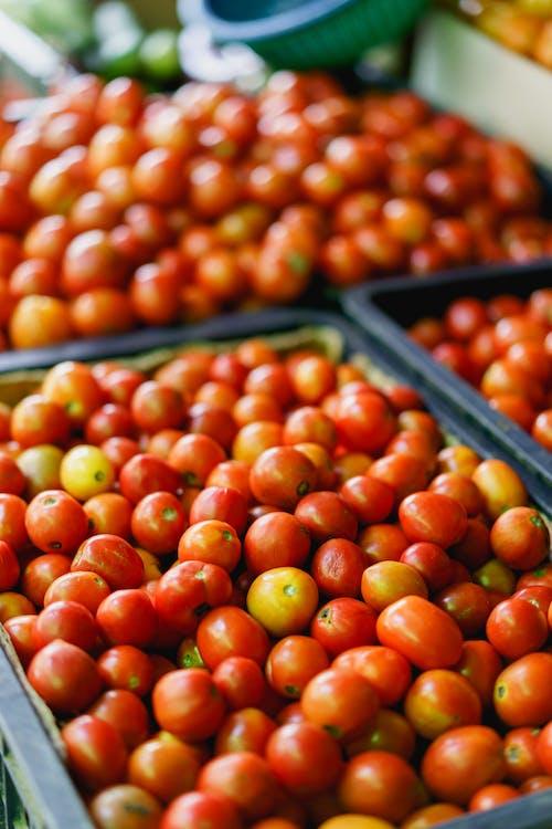 Inle Lake Myanmar pazarında satılık kiraz domates