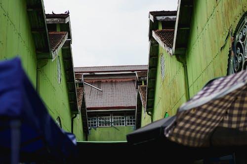 Yangon Myanmar Burma şehir merkezindeki Bogyoke Aung San Scotts pazarındaki yeşil binalar