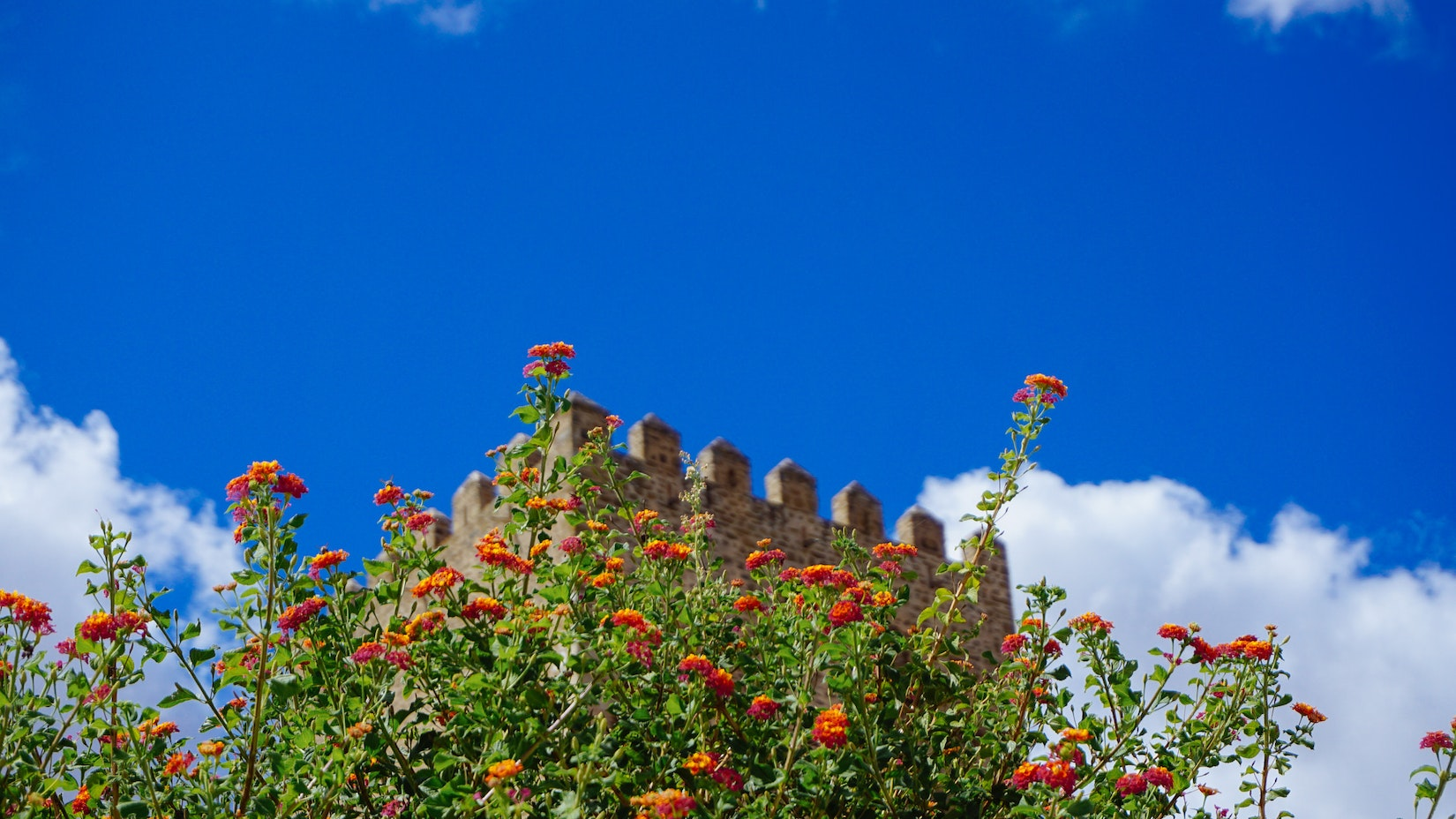 The top of the castle in Mertola