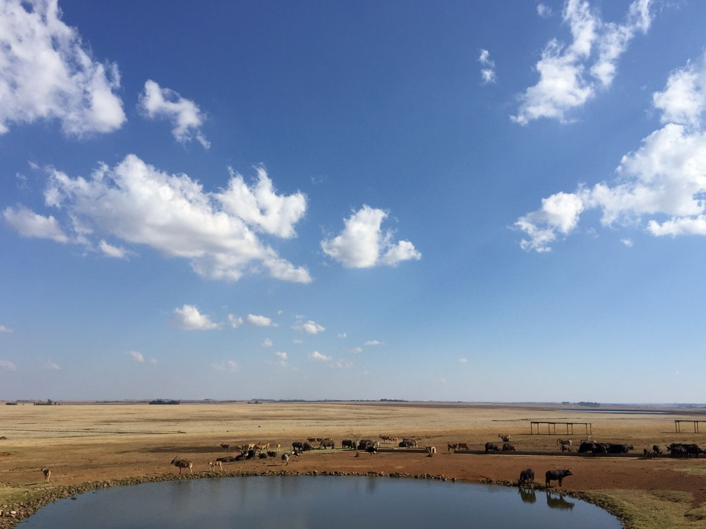 View from Kruger National Park