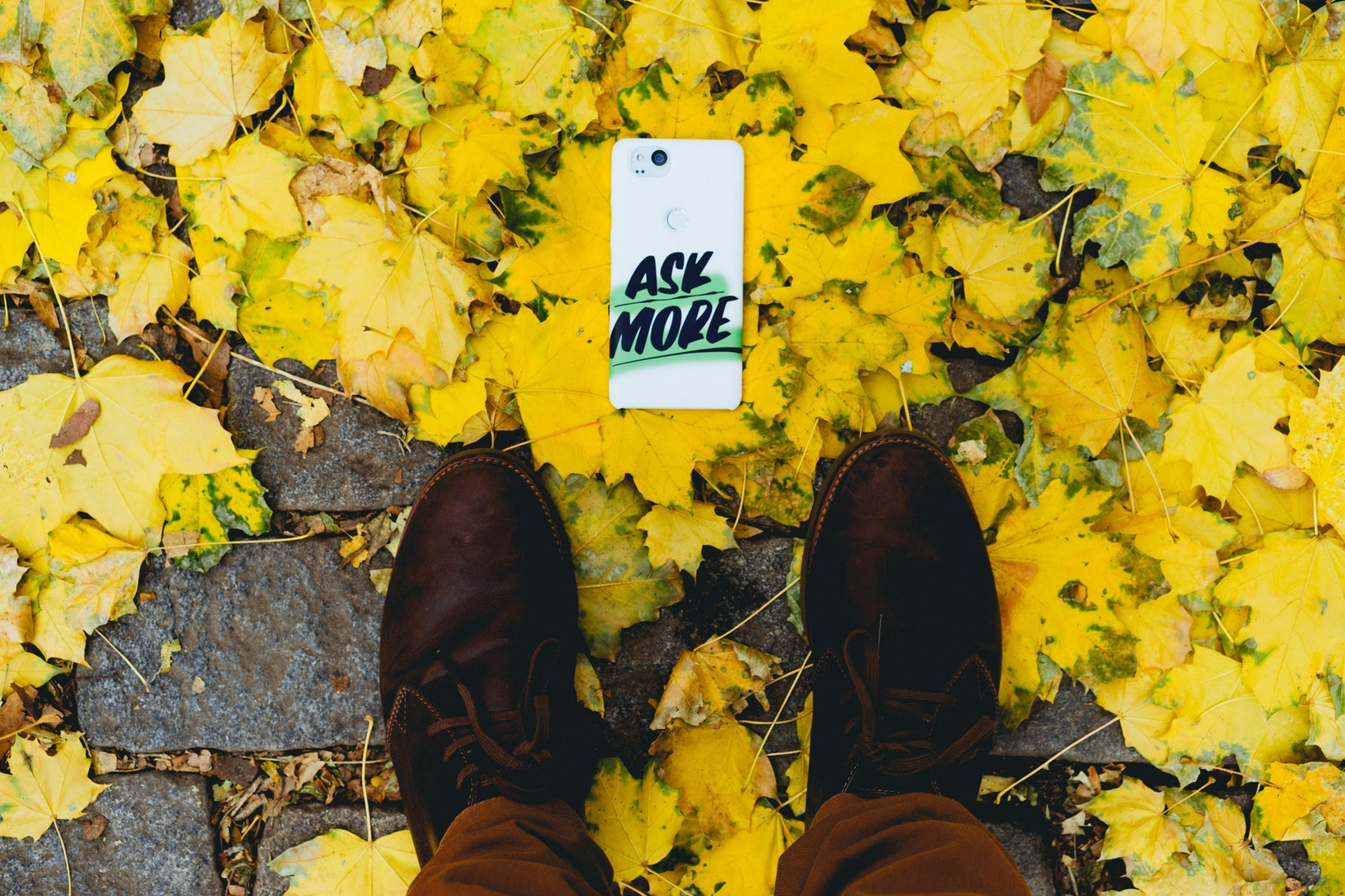 A Google Live Case on yellow leaves and mens brown shoes