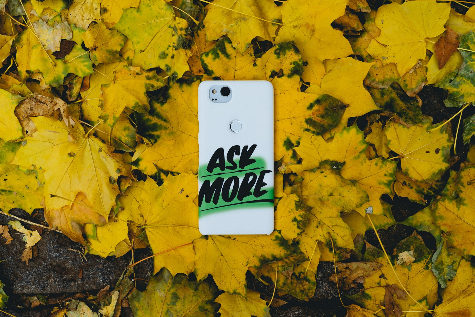 A Google Live Case on yellow leaves