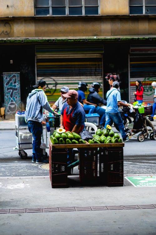 Medellin'de avokado satan Kolombiyalı sokak satıcısı