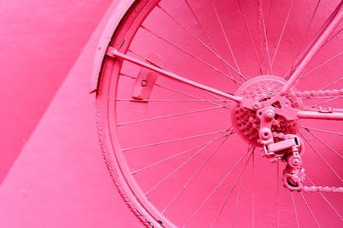 Puerto Plata Dominik Cumhuriyeti'ndeki Calle Rosada'da pembe bir duvara pembeye boyanmış bisiklet tekerleği