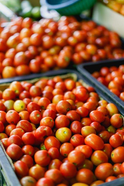 Bir pazarda plastik kasalarda Satılık Kırmızı ve Sarı Üzüm domates