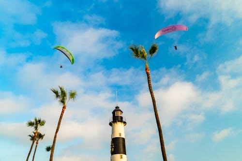Yeşil ve pembe yamaç paraşütçüleri palmiye ağaçlarının ve küçük bir deniz fenerinin üzerinde uçuyor