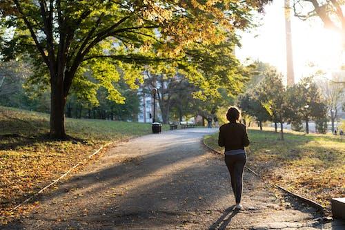 Altın saatte bir park yolunda yürüyen minyon bir kızın silueti