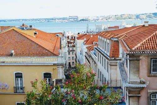 Arka planda nehir manzaralı Lizbon'daki sarı, beyaz ve pembe binaların görünümü