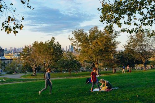 Altın saatte Sunset Park'ın yeşil çimenli alanları