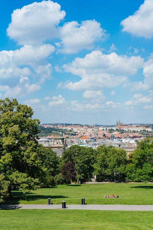 Prag binaları ve arka planda mavi bir gökyüzü olan bir parkın yeşil çimenli alanları