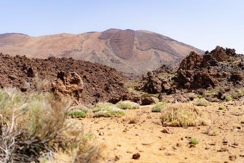 Tenerife'de yürüyüş
