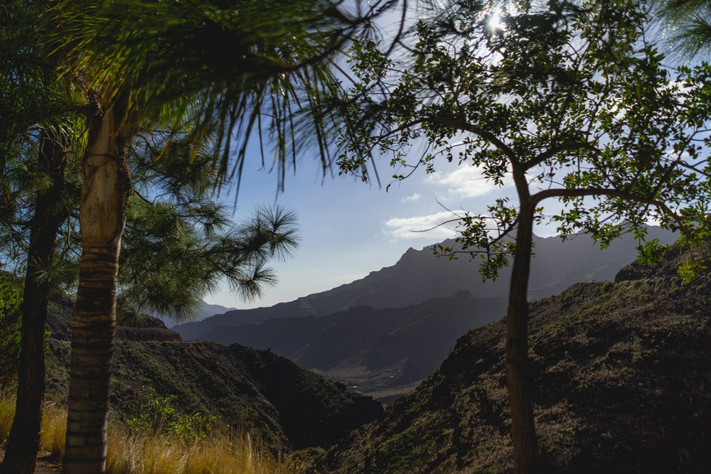 Landscape in Gran Canaria, Canary Islands