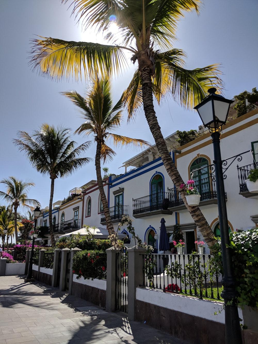 Some of the buildings in Puerto de Mogan