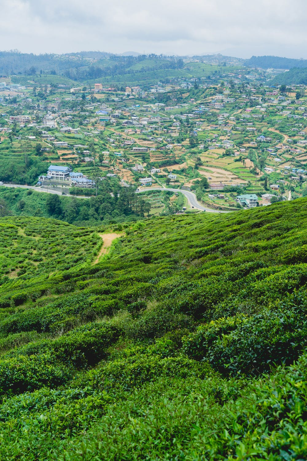 Green hills with a town in the distance in Nuwara Eliya, Sri Lanka